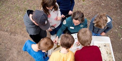 Junior Rangers Minibeast Discovery - Mitchell River Silt Jetties