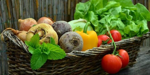 Spring in the Veggie Garden - Preparing for your Summer Harvest
