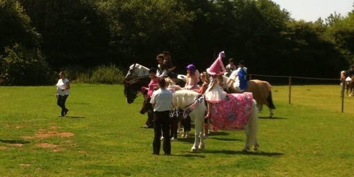 Jewels Stables - Fun Show