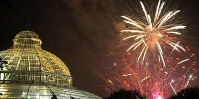 Fireworks Show at Sefton Park