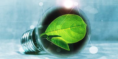 Innovative Sustainability – Packaging & Waste