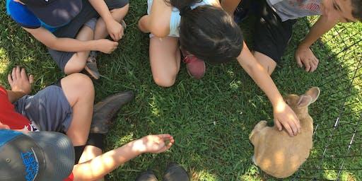 School Vacation Days at Massaro