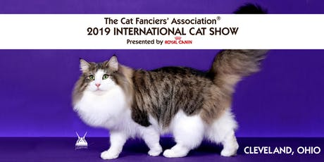 2019 CFA International CAT SHOW - Presented by Royal Canin tickets