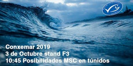 Posibilidades MSC en Túnidos: Pesquerías y empresas. entradas