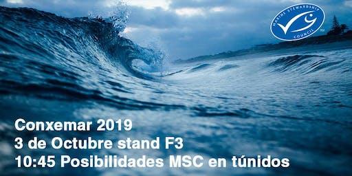 Posibilidades MSC en Túnidos: Pesquerías y empresas.