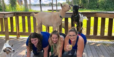 Goat Yoga Tampa plus free drink! In the Loop Brewing 9/29/19;  Land O Lakes