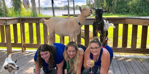 Goat Yoga Tampa plus free drink! In the Loop Brewing 10/27/19; Land O Lakes