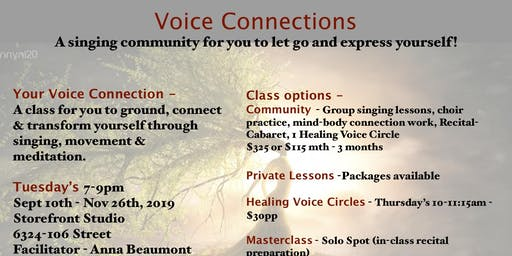VOICE Connections