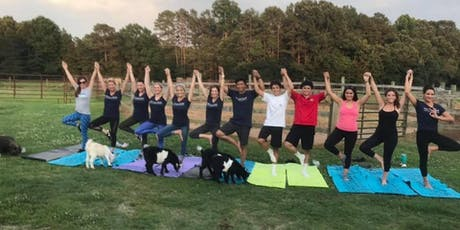 Carolina Goat Yoga Class: October 19th tickets