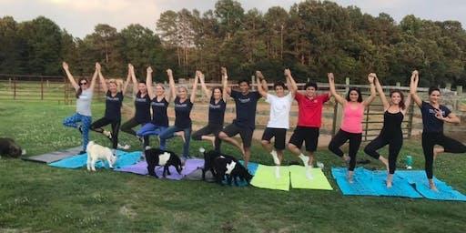Carolina Goat Yoga Class: October 19th
