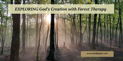 Connect with God's Creation