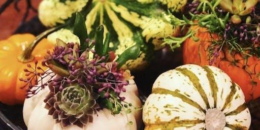Make it & Take it: Mini Succulent Pumpkins