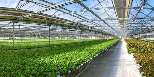 October Go Green Agriculture Farm Tour, Encinitas, CA