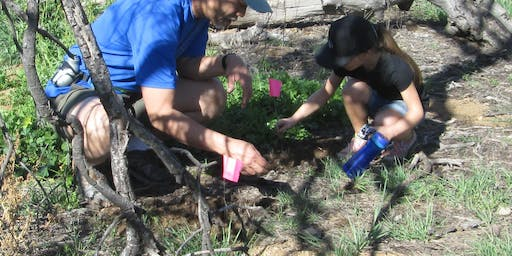 Redlands Conservancy - CEEP - Sprucing Up the Native Demonstration Garden