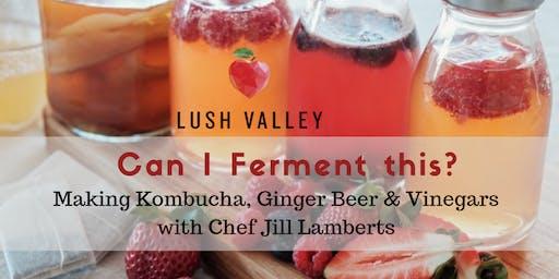 Can I Ferment This? Kombucha, Ginger Beer & Vinegar