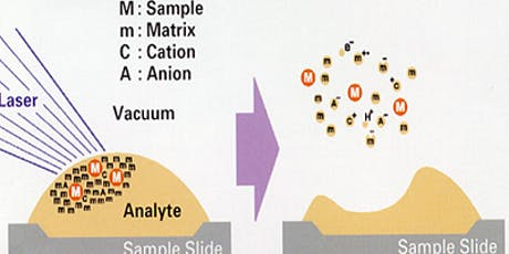 Matrix-assisted Laser Desorption/Ionization (MALDI) Principles and Applications tickets