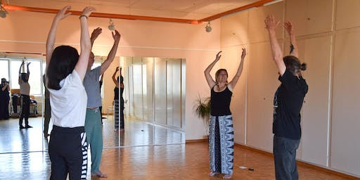 Initiation / Pratique  Shibashi Tai-Chi Qi-Gong Session d'automne (2)