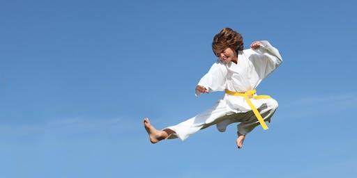Burlington Free Kids Karate Clinic
