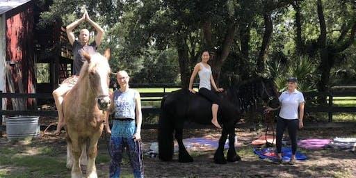 Equine Yoga Class