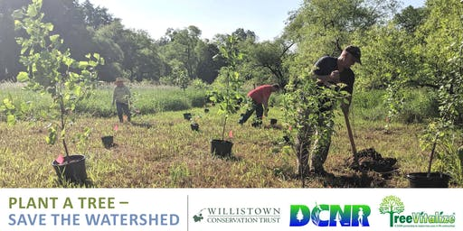 Tree Planting at Ashbridge Preserve