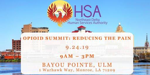 Opioid Summit: Reducing the Pain