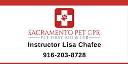 Pet CPR & First Aid Class