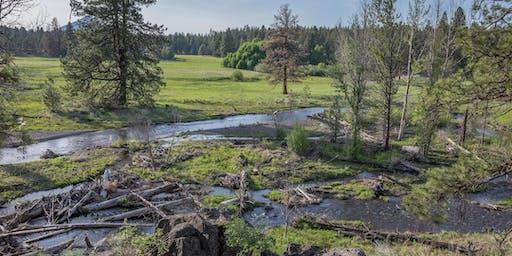 Ochoco Creek Cleanup
