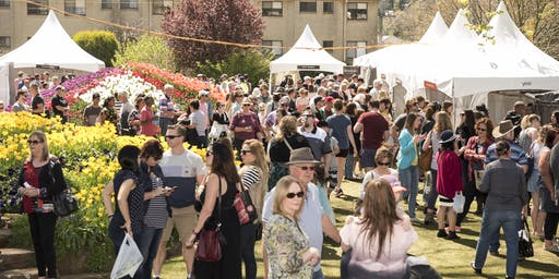 2019 Southern Highlands Food & Wine Festival
