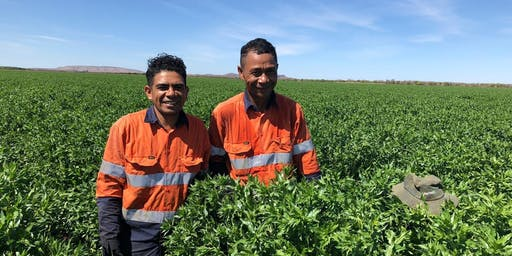 Seasonal Worker Programme & Pacific Labour Scheme Information Session