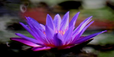 Restorative Yoga & Yoga Nidra