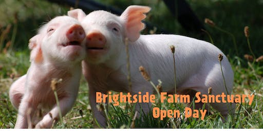 Brightside Farm Sanctuary Open Day 2019