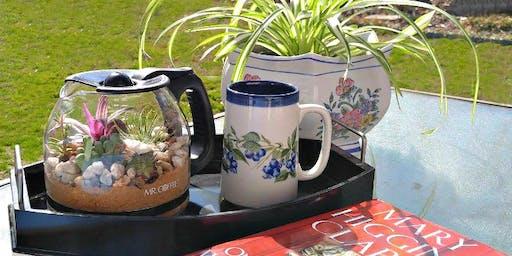 Coffee Pot Terrarium Make & Take