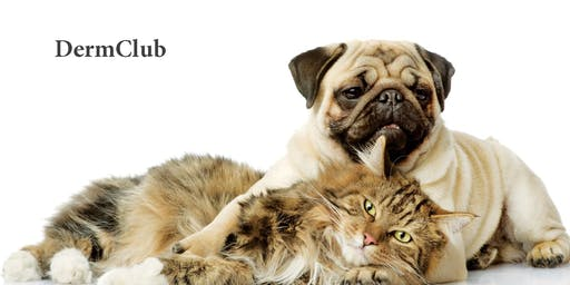 Dermatophytosis in the dog and cat