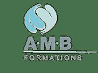 AMB FORMATIONS