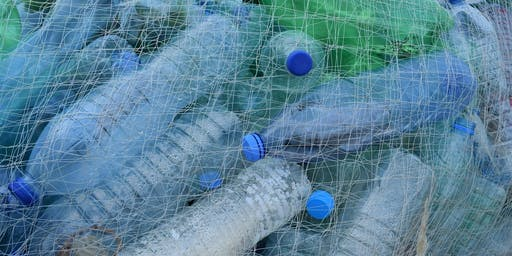 Plastic Pollution: From Research to Everyday Life