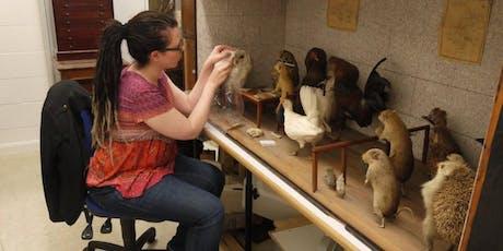 Heritage Open Days - Lancashire Conservation Studios (Preston) #HODs tickets