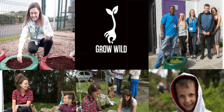 Green Your Youth Work: supporting more youth action for nature tickets