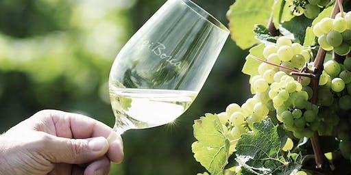 Degustación de Bodega Luigi Bosca - Recibiendo la primavera en Winexperts