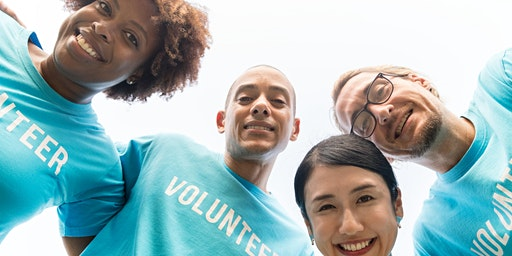 The role of volunteers