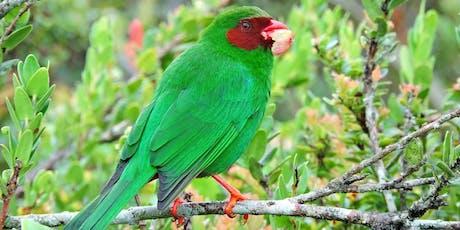 Retorno averaves Parque Natural Chicaque tickets