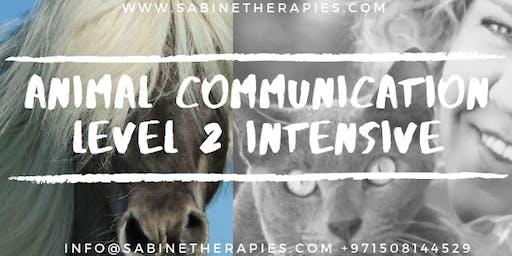 Animal Communication - LEVEL 2 - Intensive Training Program