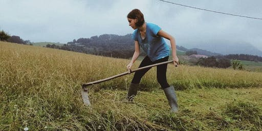 Learn to Scythe with Bristol Parks and TCV