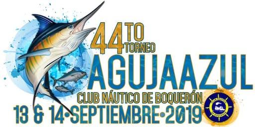44to Torneo de Aguja Azul