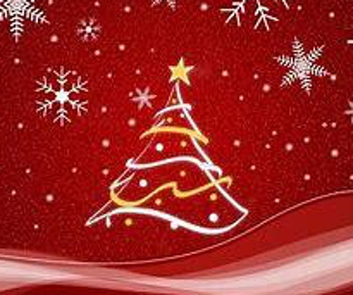 Salisbury Chamber Christmas 90 minutes lunch at Milford Hall Hotel & Spa image