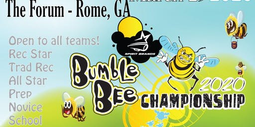 Bumble Bee Cheer & Dance Championships