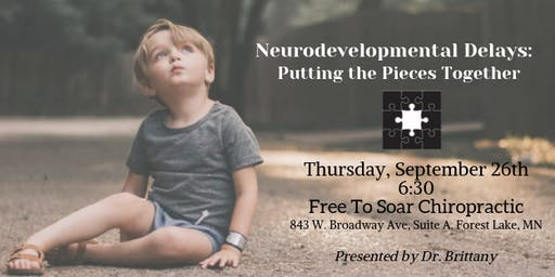 Neurodevelopmental Delays: Putting The Pieces Together