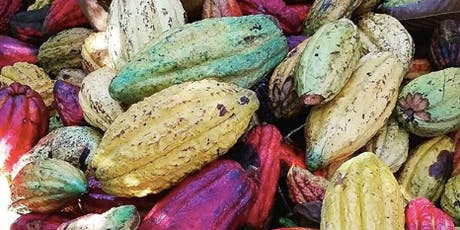 Cacao Sourcing Chat tickets