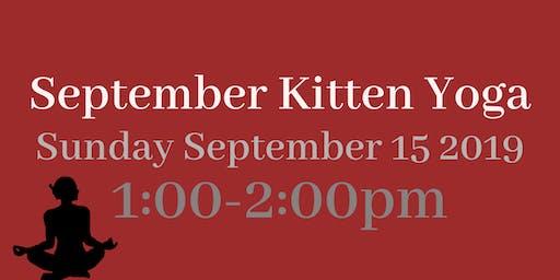 September 2019 Kitten Yoga!
