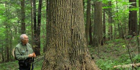 Explore an Old Growth Habitat with Bob Leverett  tickets
