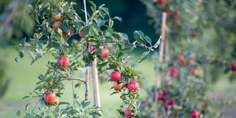 Late Summer Horticultural Crops Twilight tickets